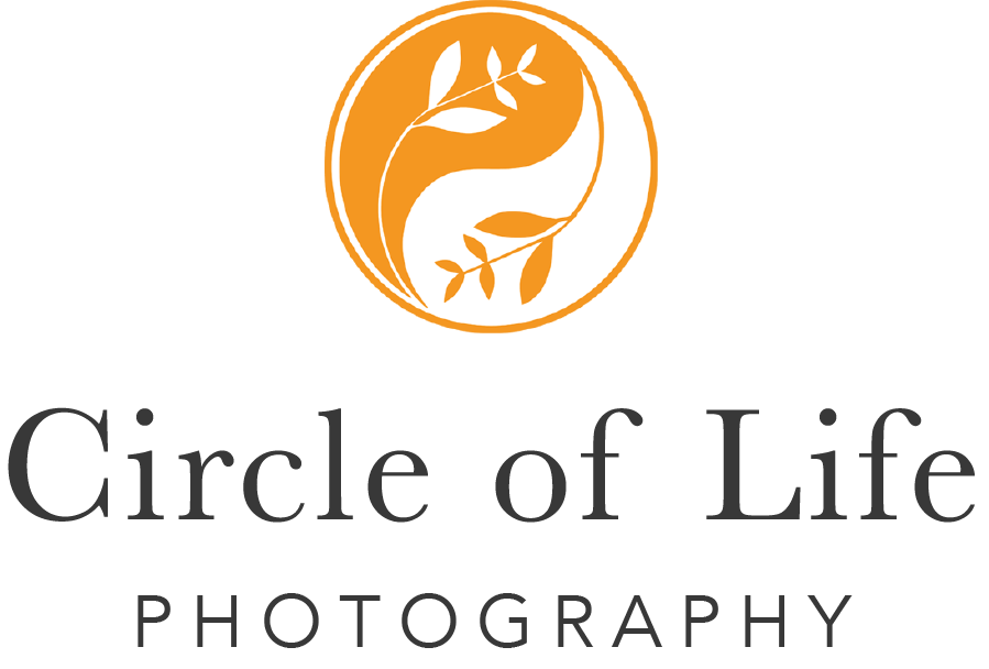 Circle of Life Photography