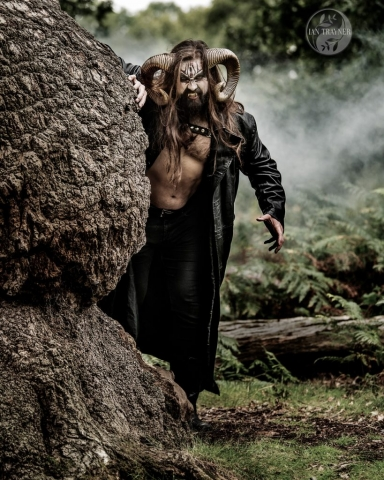 Photo of horned beast in the forest at dusk. Photo by Ian Trayner