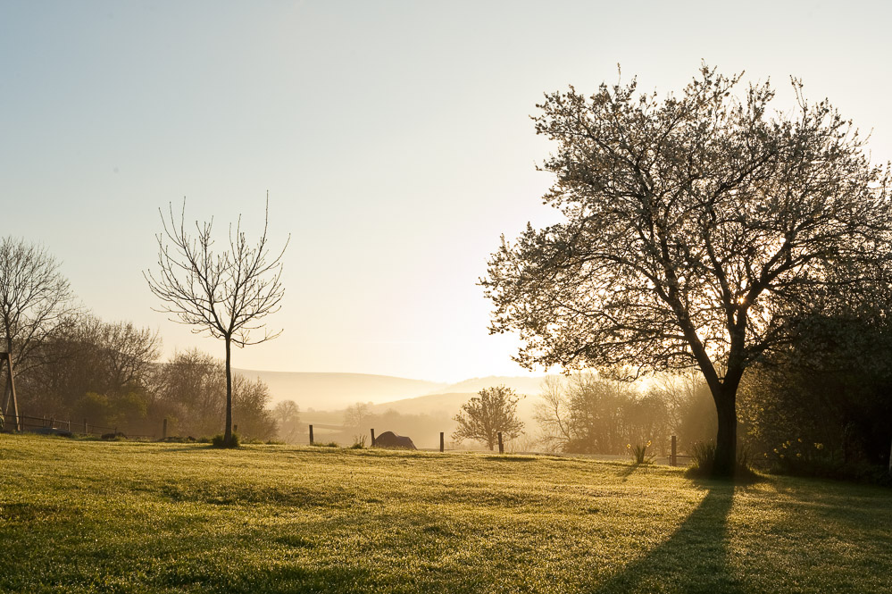 The profound magic of light as the sun rises over the Welsh mist.
